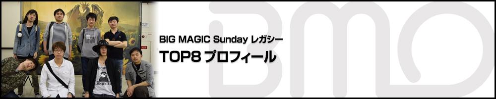 BIGMAGIC Sunday Legacy TOP8プロフィール