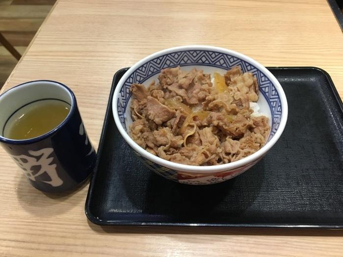 ryujiloggyu 02.JPG