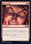 nakamichim21 23-4.jpg